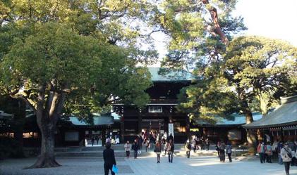 140116_hanateru_c.jpg