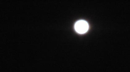 140117_hanateru_moon.jpg