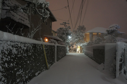 140214_hanateru_b.jpg