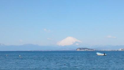 140310_hanateru_fuji.jpg