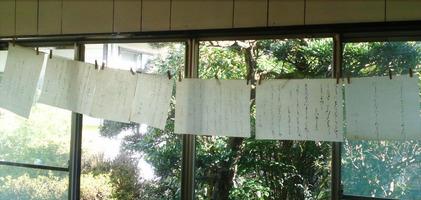 150201_hanateru_c.jpg