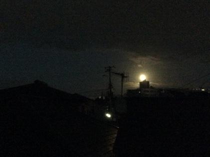 151027_hanateru_moon.jpg