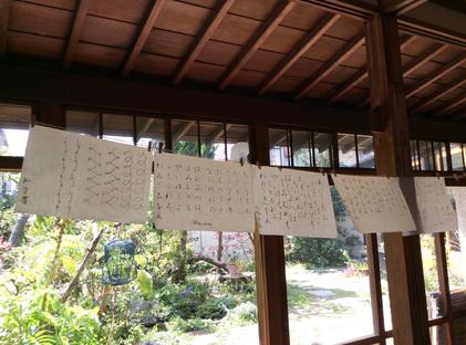 160415_hanateru_e.jpg