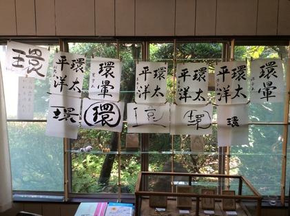 161120_hanateru_ika_a.jpg