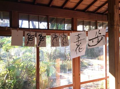 161216_hanateru_c.jpg