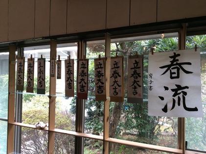 170205_hanateru_a.jpg