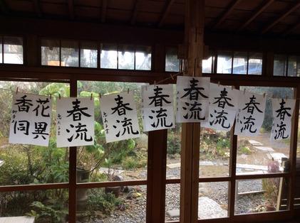 170217_hanateru_a.jpg