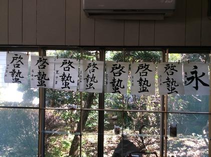 170219_hanateru_a.jpg
