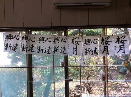 170319_hanateru_b.jpg