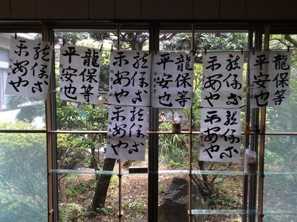 170507_hanateru_ika_b.jpg