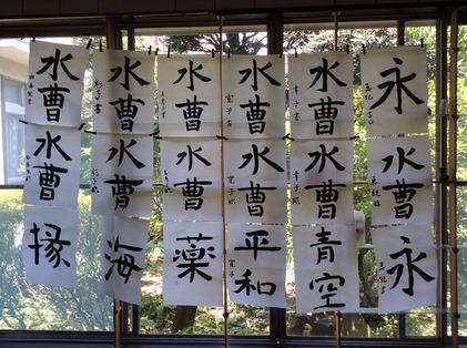 170521_hanateru_ika_b.jpg