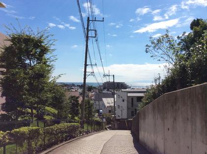 170902_hanateru_b.jpg