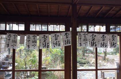 180216_hanateru_ku_c.JPG