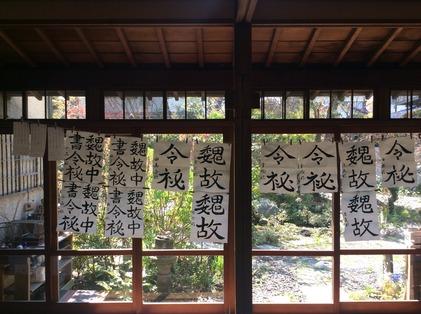 180330_hanateru_ku_c.jpg
