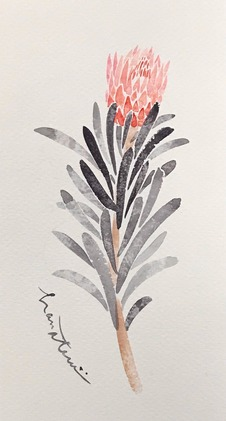 210415-hanateru-drawing01.jpeg